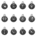 P2491SET: 12 Piece Zodiac Charm Set