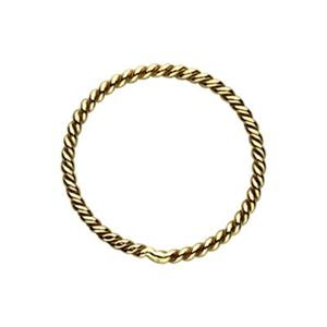 GF4810: Gold-Filled 10mm Twisted Closed Jump Ring
