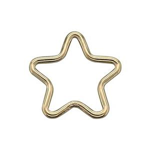 GF5751: Small Star Wire Link