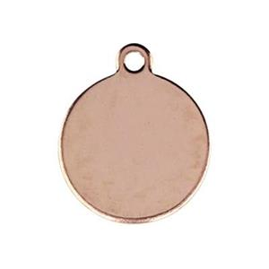 GFR221: Rose Gold-Filled Circle Tag Charm