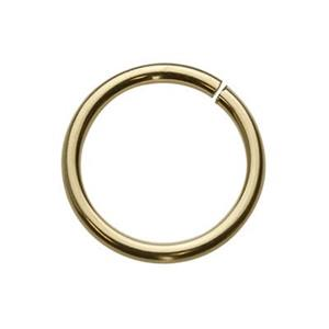 GJ110: Gold-Filled 10mm Open Jump Ring