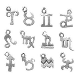 SHZ:12pc Zodiac Symbol Charms