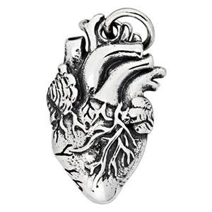 SN305: Sterling Silver Anatomic Heart Charm