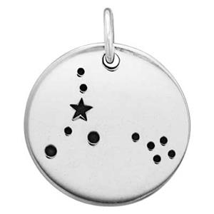 SN678: 14.8mm 18ga Pisces Zodiac Constellation Charm, 5mm Closed Jump Ring OD