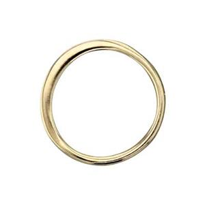 SNGS246: Gold Plated Sterling Silver Circle Link