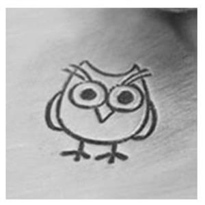 XPJ38: Owl Metal Stamp